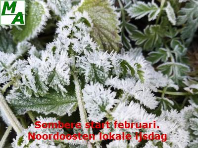Sombere start februari. Noordoosten lokale ijsdag
